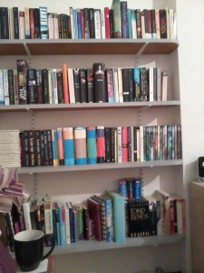 Tidy fresh bookshelves
