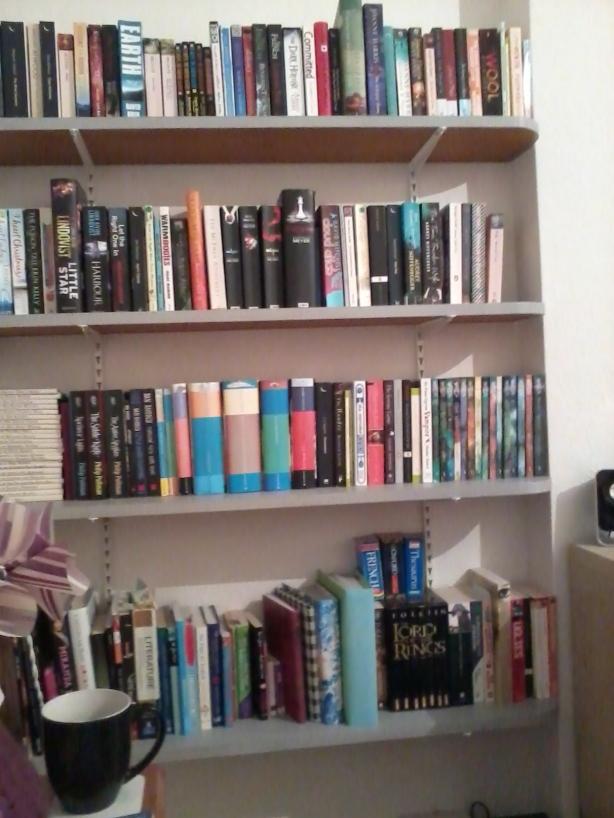 Tidy fresh bookshelves